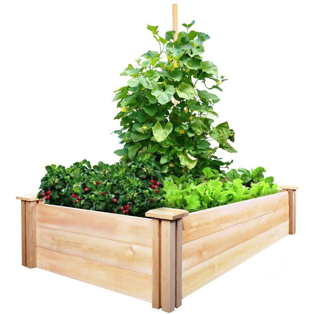 2 ft. x 4 ft. x 10.5 in. Cedar Raised Garden Bed