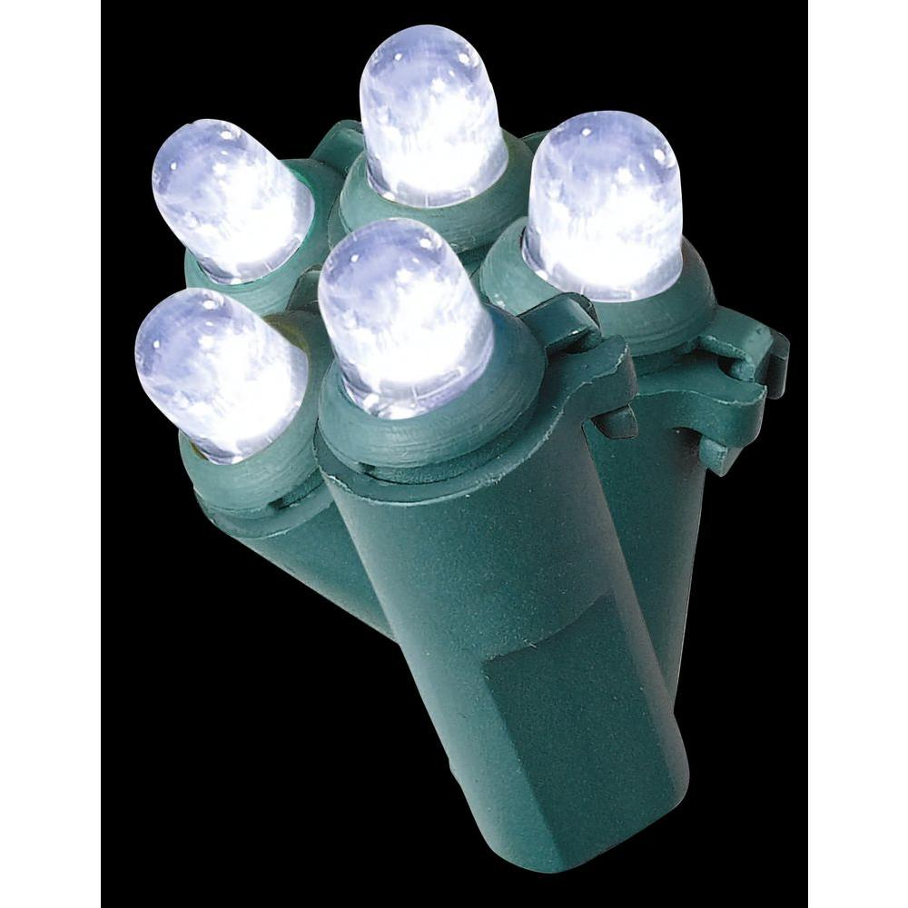 Home Accents Holiday 50-Light White LED Dome Light Set
