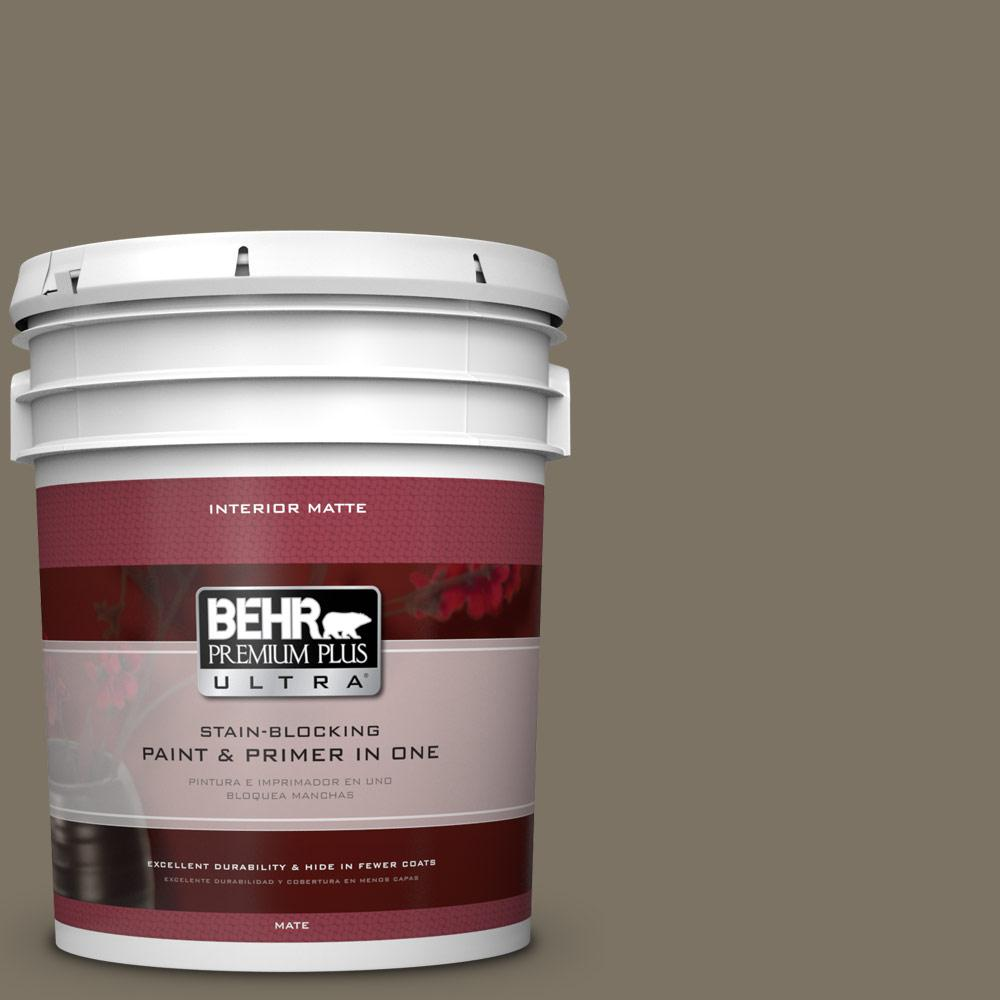5 gal. #N320-6 Arrowhead Matte Interior Paint