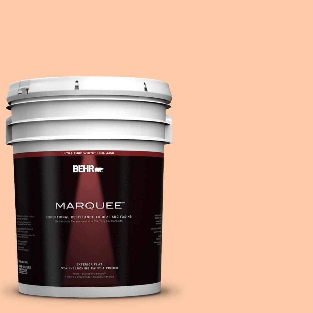 5-gal. #270C-3 Coral Confection Flat Exterior Paint
