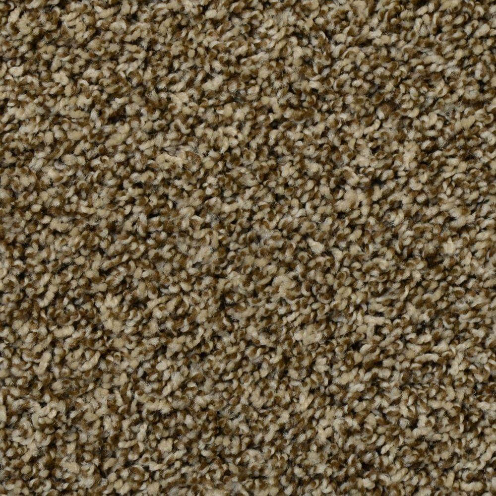 Peace of Mind - Color Espresso Twist 12 ft. Carpet (1080 sq. ft. / Roll)