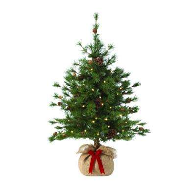 36 in. Pre-Lit LED Bristle Cone Pine Burlap Artificial Table Tree