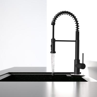 Lemist Single-Handle Coil Springneck Pull-Down Sprayer Kitchen Faucet in Matte Black