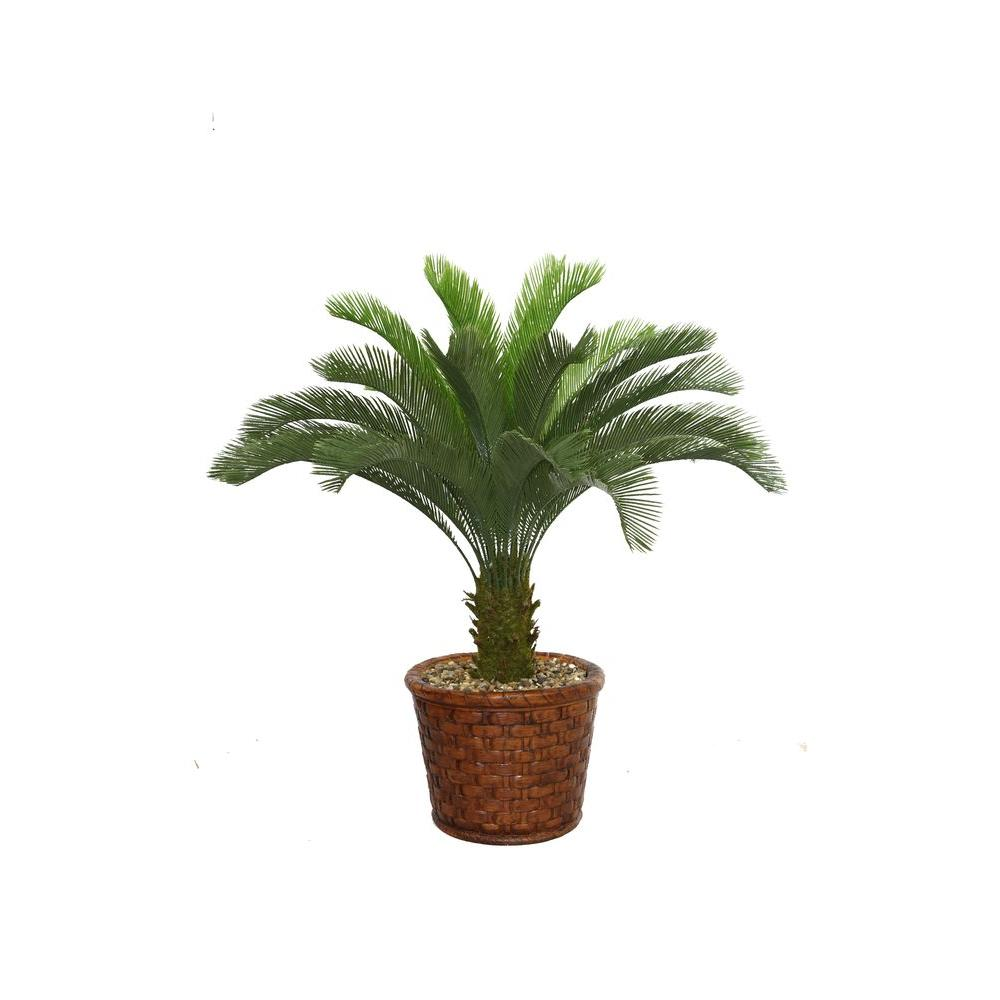 53 in. Tall Cycas Palm Tree in 17 in. Fiberstone Planter