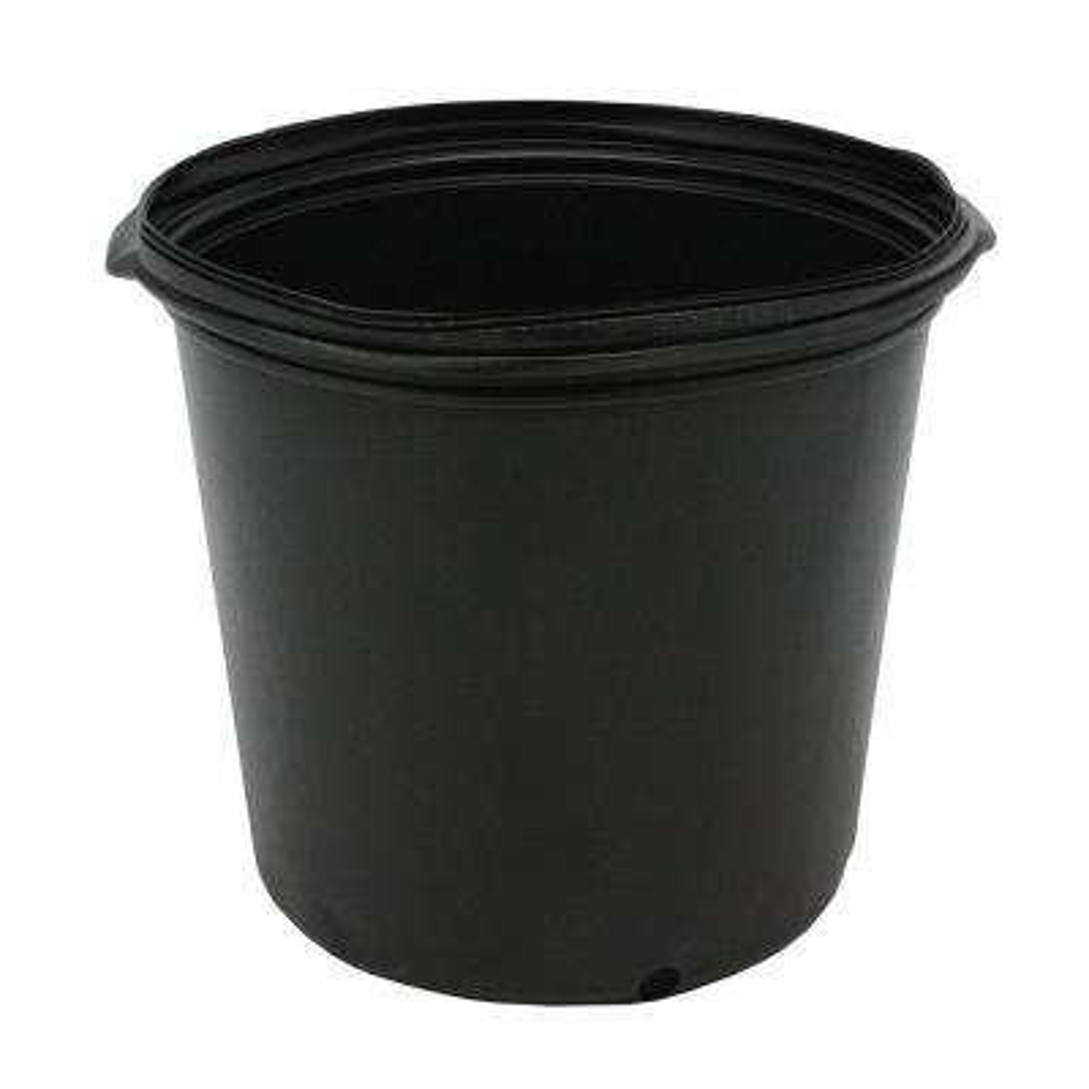 1/2 Gal. Plastic Nursery Pots (50-Pack)