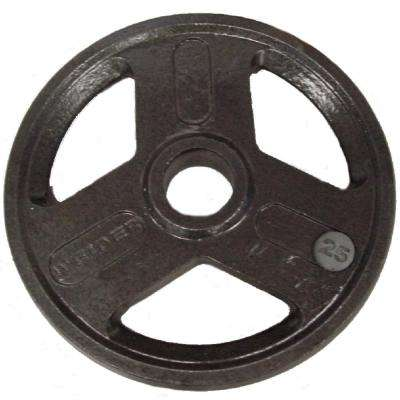 25 lb. Olympic Handle Hammertone Plate