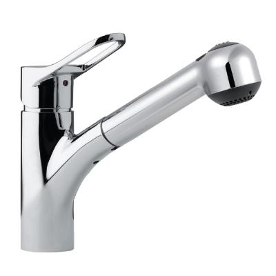 Ayr Single-Handle Pull Out Sprayer Kitchen Faucet with CeraDox Technology in Polished Chrome