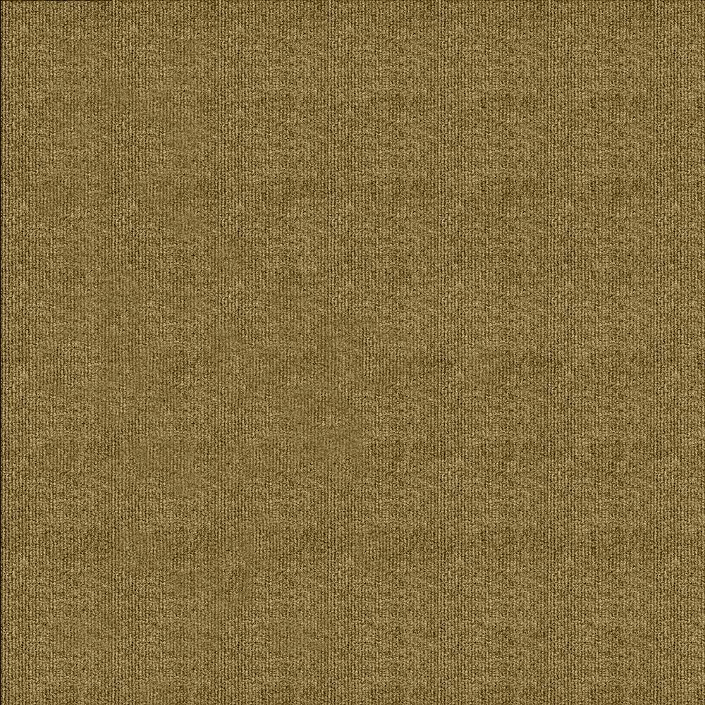 Elevations Stone Beige : Trafficmaster carpet sample elevations color stone