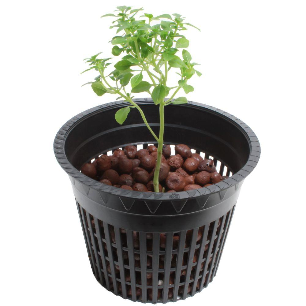 Net Pot Nursery 50 Pack Black