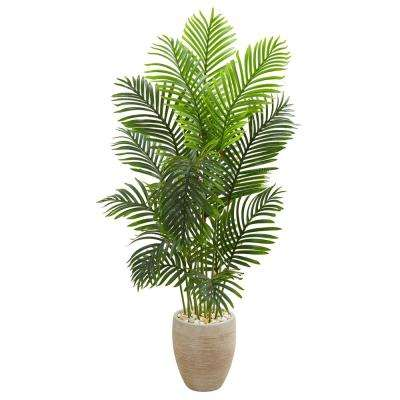 Indoor 5 ft. Paradise Palm Artificial Tree in Sand Colored Planter