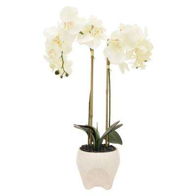 17 in. x 6 in. White Faux Orchid Flower Pot