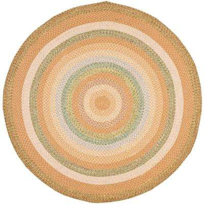 Braided Tan/Multi 4 ft. x 4 ft. Round Area Rug