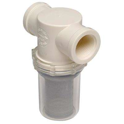 1 in. Raw Water Strainer