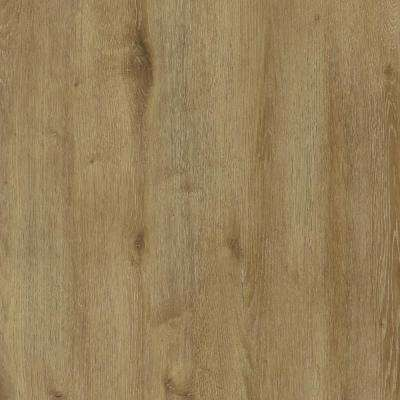 Verge Pro 7.25 in. x 48 in. Tamarack Tide Glue Down Vinyl Plank Flooring (38.67 sq. ft. / case)