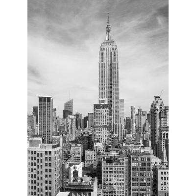 72 in. H x 100 in. W The Empire State Wall Mural