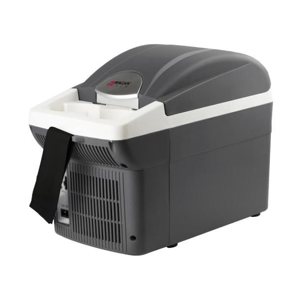 12-Volt 6 Qt. Chest Cooler/Warmer with Carry Strap