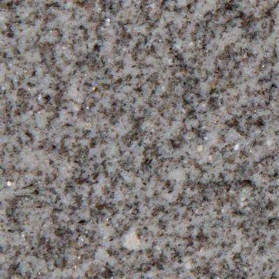 3 in. x 3 in. Granite Countertop Sample in Winthrop Gray