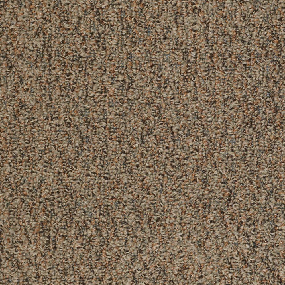 TrafficMASTER Isla Vista - Color Copper Earth 12 ft. Carpet