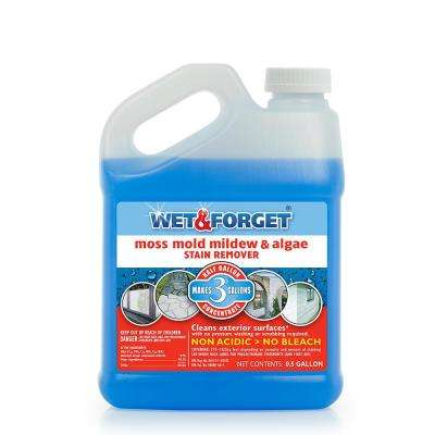 0.5 gal. Moss Mold Mildew and Algae Stain Remover