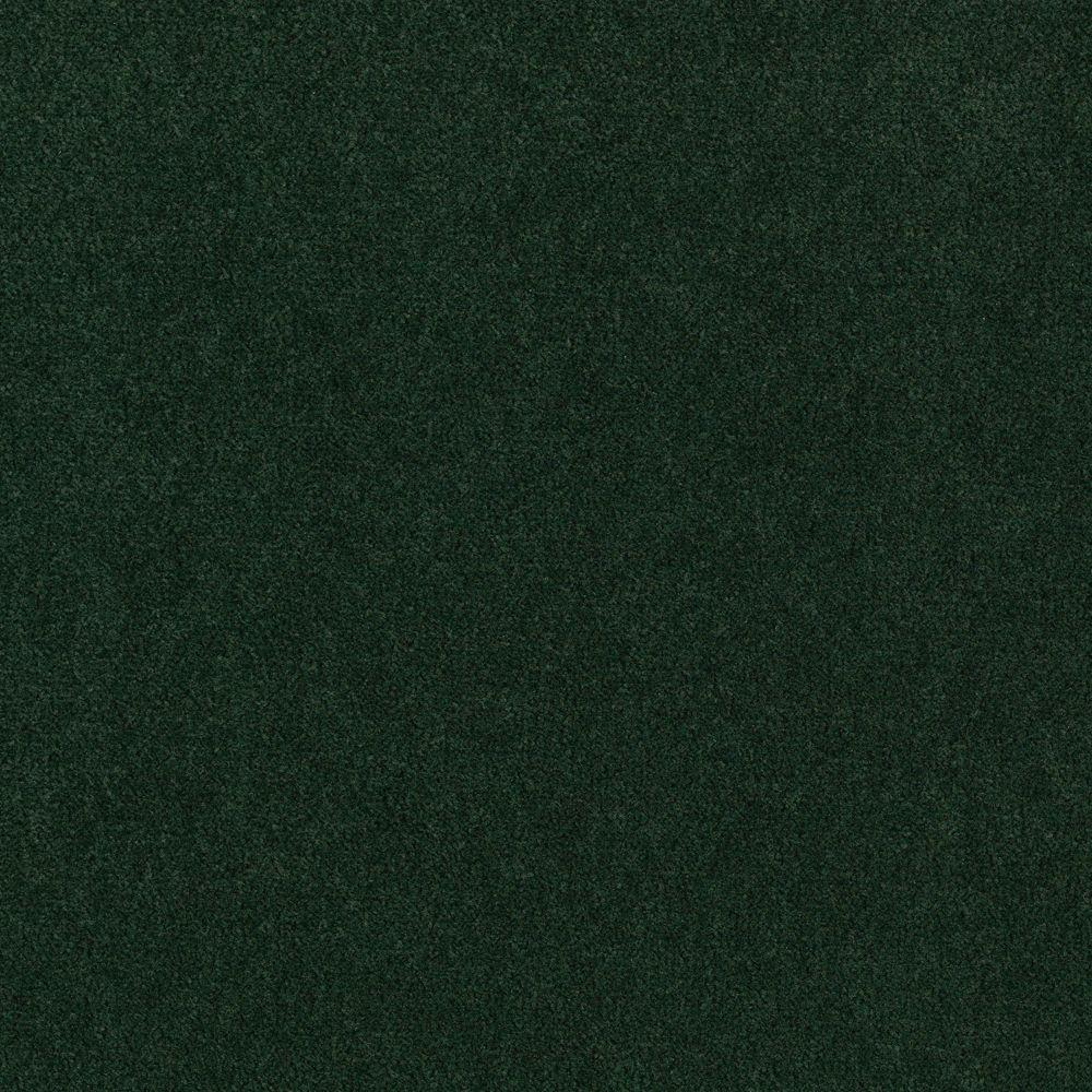 Carpet Sample - Core Competency - Color Emerald Isle Texture 8
