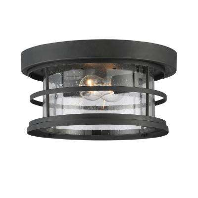 Black 2-Light Outdoor Hanging Ceiling Light