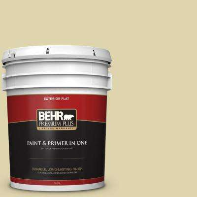 5 gal. #MQ4-40 Primitive Green Flat Exterior Paint and Primer in One