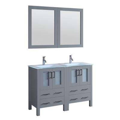 Bosconi 48 in. W Double Bath Vanity in Gray with Vanity Top with White Basin and Mirror