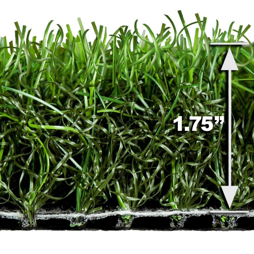 Turf Evolutions Splendid Indoor Outdoor Landscape Artificial Synthetic Lawn Turf Grass Carpet,5 ft. x 10 ft.-DISCONTINUED