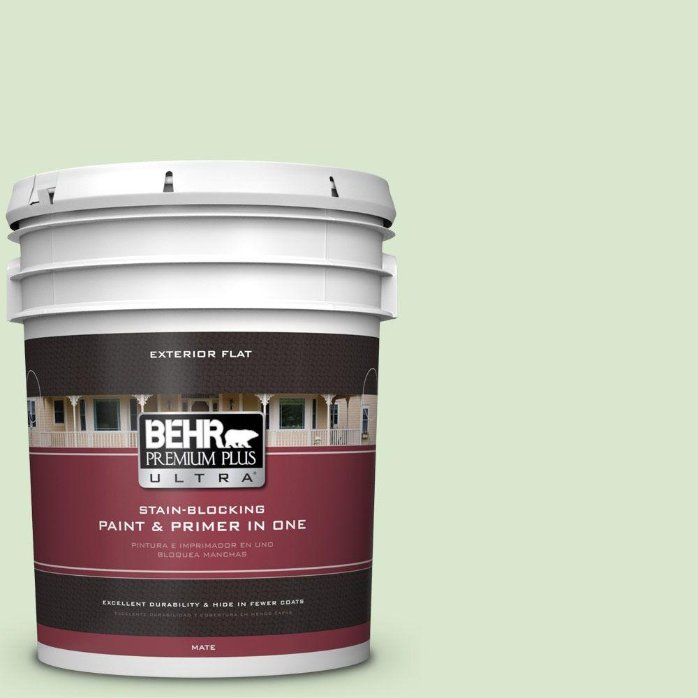 BEHR Premium Plus Ultra 5-gal. #T12-18 Minty Frosting Flat Exterior Paint