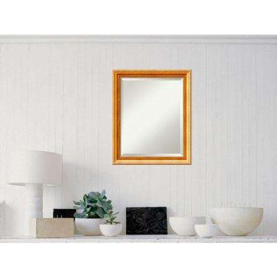 Townhouse Gold Wood 19 in. W x 23 in. H Traditional Framed Mirror