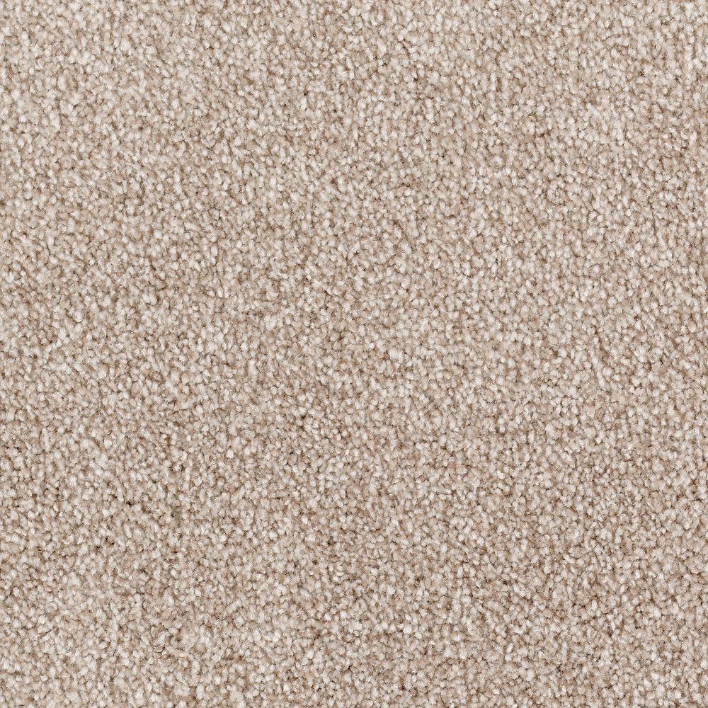 Tides Edge - Color Walnut Textured 12 ft. Carpet