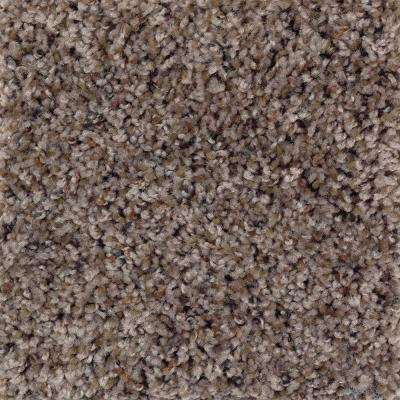 Timberwolf I - Color Teak Texture 12 ft. Carpet