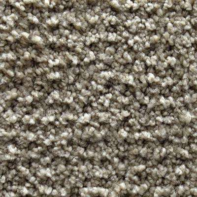 Carpet Sample - Fashion Feature - Color Hanover Pattern 8 in. x 8 in.