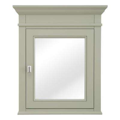 Braylee 24 in. W x 28 in. H Surface Mount Mirrored Medicine Cabinet in Sage Green