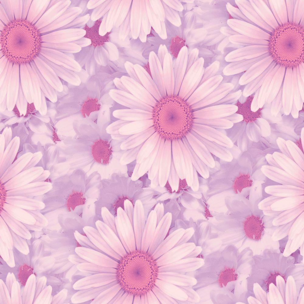 The Wallpaper Company 56 sq. ft. Pink Daisy Fantasy Wallpaper-DISCONTINUED