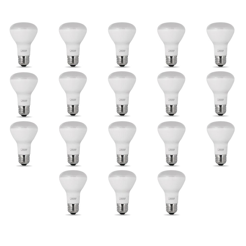 Feit Electric 40w Equivalent Soft White 2700k T10: Feit Electric 45-Watt Equivalent (2700K) R20 LED Light