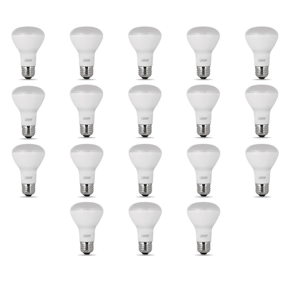 Feit Electric 45-Watt Equivalent (2700K) R20 LED Light Bulb, Soft White (18-Pack)