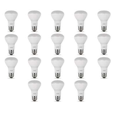 45-Watt Equivalent (2700K) R20 LED Light Bulb, Soft White (18-Pack)