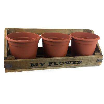 17 in. Wooden Plant Shelf with Three 5.5 in. Pots