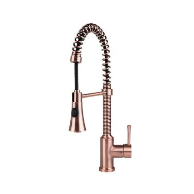 Residential Single-Handle Spring Coil Pull-Out Sprayer Kitchen Faucet in Antique Copper