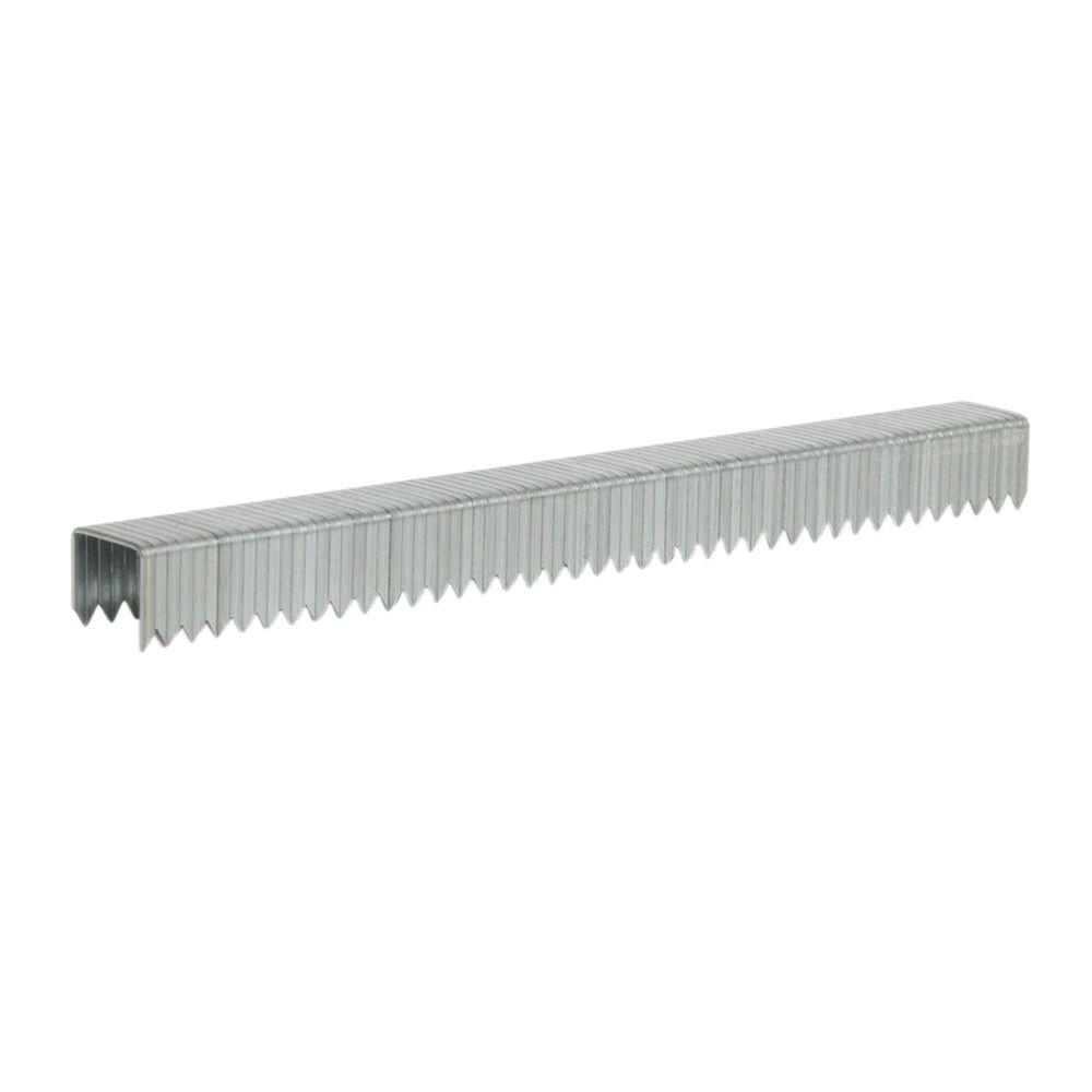 Arrow Fastener T50 5/16 in. Leg x 3/8 in. Crown 1/8-Gauge Galvanized Steel Staples (1,250-Pack)