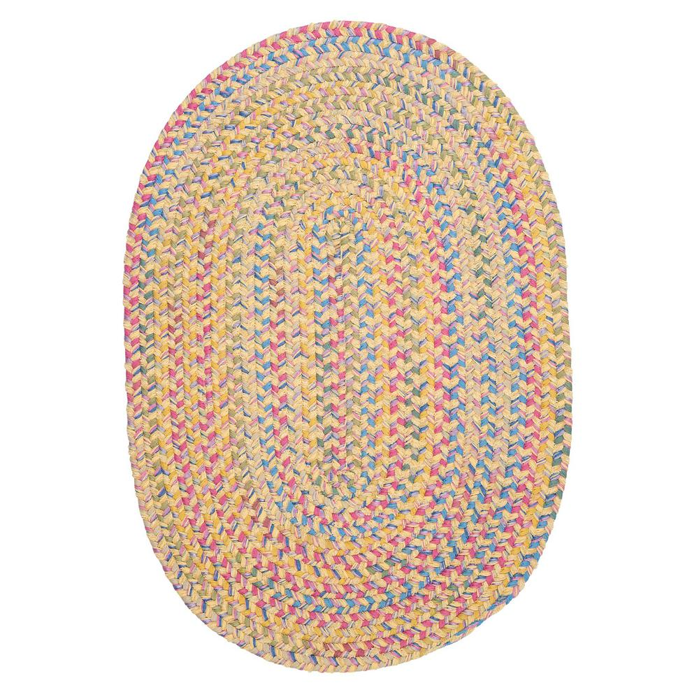 Home Decorators Collection Seabrook Chenille 4 ft. x 6 ft. Lemon Braided Area Rug