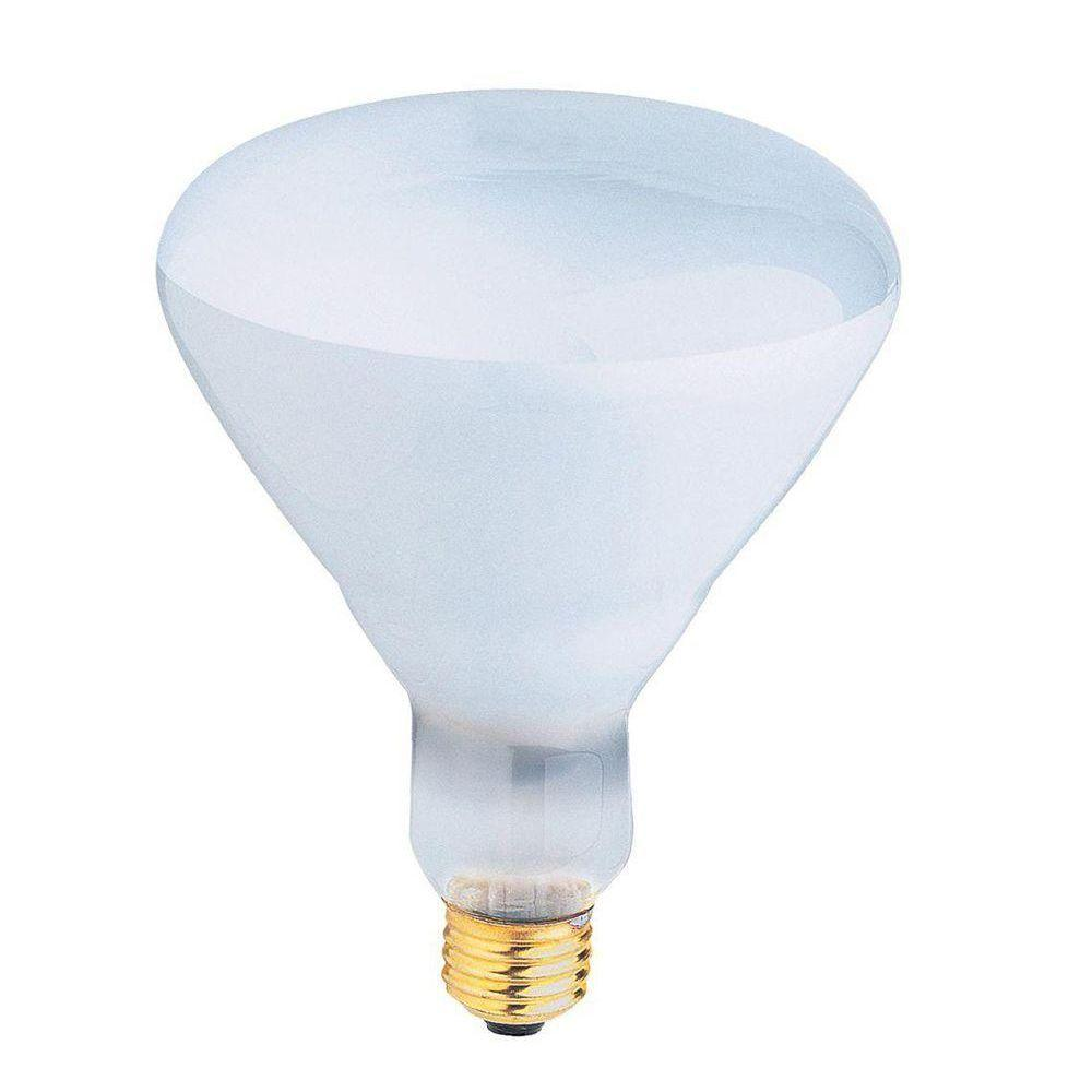 Feit Electric 500-Watt Incandescent R40 Pool and Spa Flood Light Bulb (24-Pack)