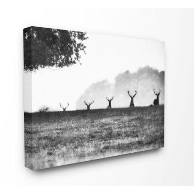 "36 in. x 48 in. ""Black and White Deer Family Photo"" by Villager Jim Canvas Wall Art"