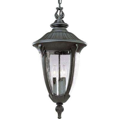 Meridian Collection 3-Light Textured Black Outdoor Hanging Lantern