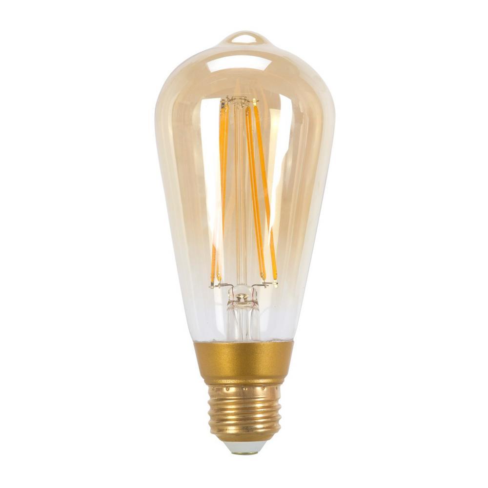 60-Watt Equivalent ST19 Vintage Edison LED Light Bulb Soft White