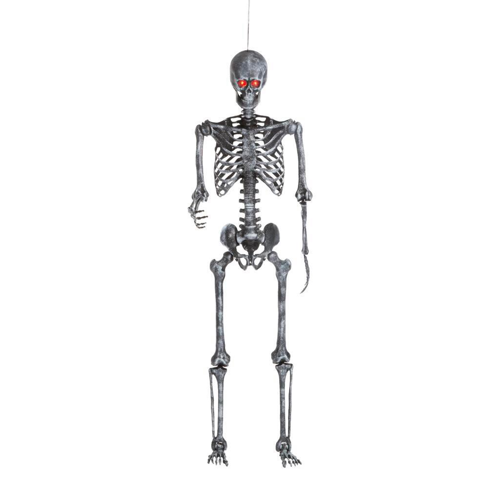 5 ft Hanging Plastic Ash Posable Skeleton with LED Eyes