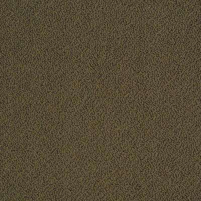 Carpet Sample - Braidley - In Color Dried Herbs 8 in. x 8 in.