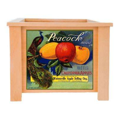 15 in. x 15 in. Deluxe Cedar Planter Box with Peacock Art