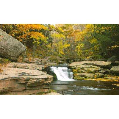 120 in. x 60 in. Window Well Scene - Stream